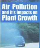 Air Pollution Effects on Plant  Growth