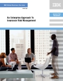 An Enterprise Approach To Insurance Risk Management