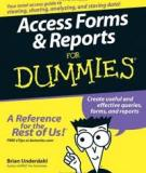 Access Forms & Reports For Dummies