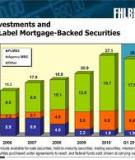 Debt  Investment  Securities Held by  Banks