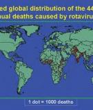 Global Illness and Deaths Caused by Rotavirus Disease in Children