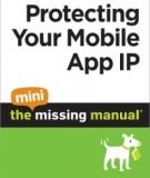 Attract Visitors to Your Site: The Mini Missing Manual
