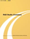RAD Studio (Common)