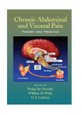 Chronic Abdominal and Visceral PainTheory and Practicee