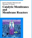 Catalytic Membranes and Membrane Reactors