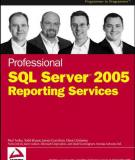 Professional SQL Server™ 2005 Reporting Services