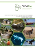 EFFECTS OF POLLUTANTS ON THE REPRODUCTIVE HEALTH  OF MALE VERTEBRATE WILDLIFE  -  MALES UNDER THREAT