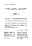 "Báo cáo ""The effect of Cu concentration in soil and phosphorous fertilizer on plant growth and Cu uptake by Brassia juncea L. grown on contaminated soils """