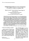 "Báo cáo "" Luangprabang hydropower and its downstream accumulative impact on sediment flux """