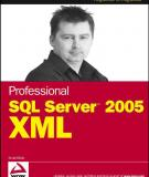 Professional SQL Server 2005 XML