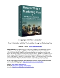 marketing plan © Copyright 2008 Peter