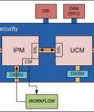 Oracle® Security Overview