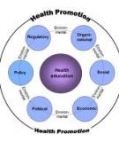 Health promotion and health education for adults