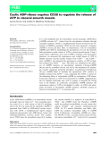 Báo cáo khoa học: Cyclic ADP-ribose requires CD38 to regulate the release of ATP in visceral smooth muscle
