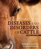 COLOR ATLAS OF DISEASES AND DISORDERS OF CATTLE_1