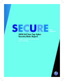 2010 Full Year Top Cyber  Security Risks Report