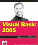 Visual Basic 2005 Programmer's Reference