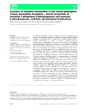 Báo cáo khoa học: Enzymes of mannitol metabolism in the human pathogenic fungusAspergillus fumigatus– kinetic properties of mannitol-1-phosphate 5-dehydrogenase and mannitol 2-dehydrogenase, and their physiological implications