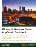 Microsoft Windows Server AppFabric Cookbook