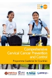 Comprehensive Cervical Cancer Prevention and Control: Programme Guidance for Countries