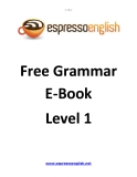 Free Grammar E-Book Level 1