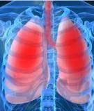PROBLEMS IN ESTIMATING THE BURDEN OF PULMONARY TUBERCULOSIS IN INDIA: A REVIEW