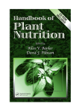Sách: Handbook of Plant Nutrition