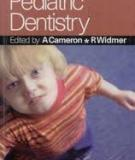 Handbook of Pediatric Dentistry_2