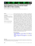 Báo cáo khoa học: Insulin like growth factor-1-induced phosphorylation and altered distribution of tuberous sclerosis complex (TSC)1⁄TSC2 in C2C12 myotubes