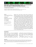 Báo cáo khoa học: Anaerobic sulfatase-maturating enzyme – A mechanistic link with glycyl radical-activating enzymes?