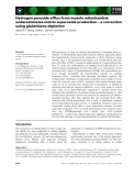 Báo cáo khoa học: Hydrogen peroxide efflux from muscle mitochondria underestimates matrix superoxide production – a correction using glutathione depletion