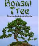 BONSAI TREES: GROWING, TRIMMING, SCULPTING AND PRUNING