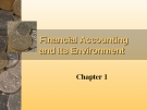 The Financial Accounting and Its Environment
