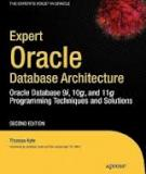 Expert Oracle Database Architecture 2nd Edition