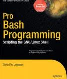 Pro Bash Programming: Scripting the GNU/Linux Shell