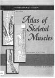 Atlas of skeletal muscles 2000