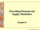 Describing Demand and Supply: Elasticities