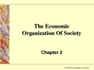 The Economic Organization Of Society
