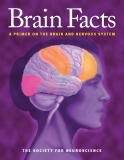 Brain Facts- A Primer on the Brain and Nervous System