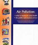 Air Pollution: what it means for your health  • the public information service