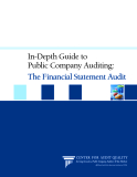 In-Depth Guide to Public Company Auditing: The Financial Statement Audit