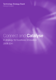 Connect and Catalyse: A strategy for business innovation 2008-2011