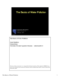 The Basics of Water Pollution