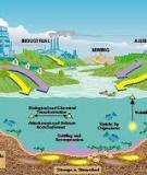 ENVIRONMENTAL IMPACT OF HEAVY METAL POLLUTION IN NATURAL AQUATIC SYSTEMS
