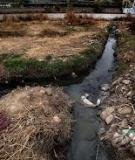 Water Pollution Control in China: Review of  laws, regulations and policies and their  implementation