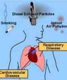 OUTDOOR AIR POLLUTION: ASSESSING THE ENVIRONMENTAL BURDEN OF DISEASE AT NATIONAL AND LOCAL LEVELS