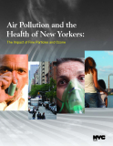 Air Pollution and the Health of New Yorkers: The Impact of Fine Particles and Ozone