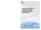 Ambient air pollution by Polycyclic Aromatic Hydrocarbons (PAH). Position Paper