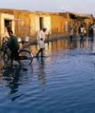 The Global Report of the Economics of  Adaptation to Climate Change Study: Consultation Draft
