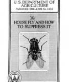 The House Fly and How to Suppress It